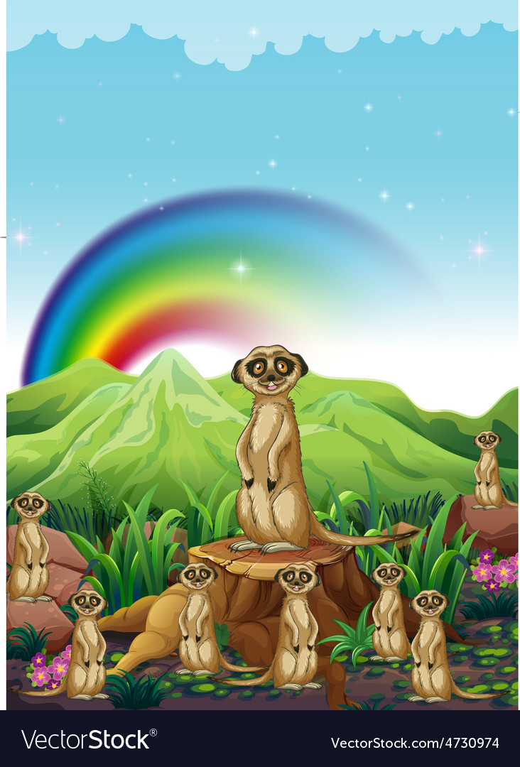 Meerkats vector | Price: 3 Credit (USD $3)