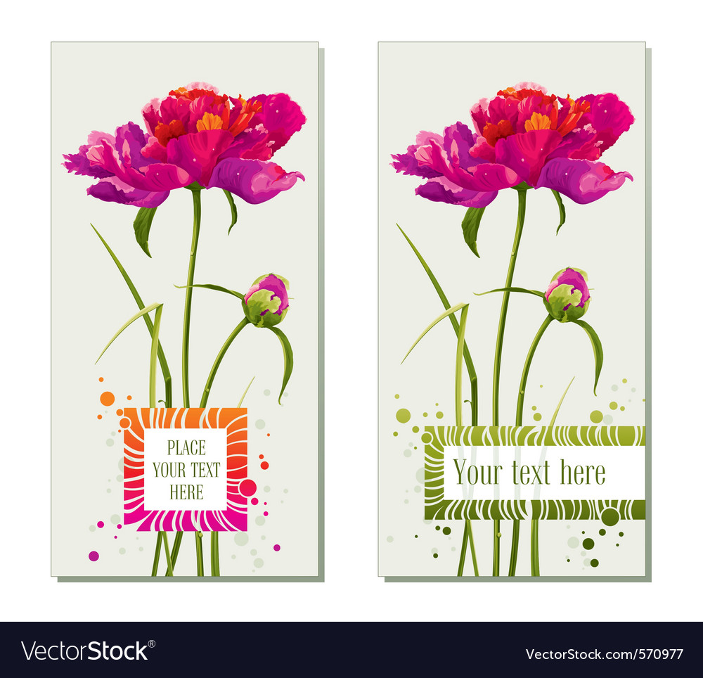 Floral greeting cards vector | Price: 1 Credit (USD $1)