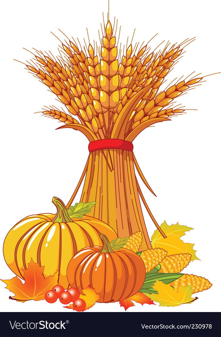 Thanksgiving harvest background vector | Price: 3 Credit (USD $3)