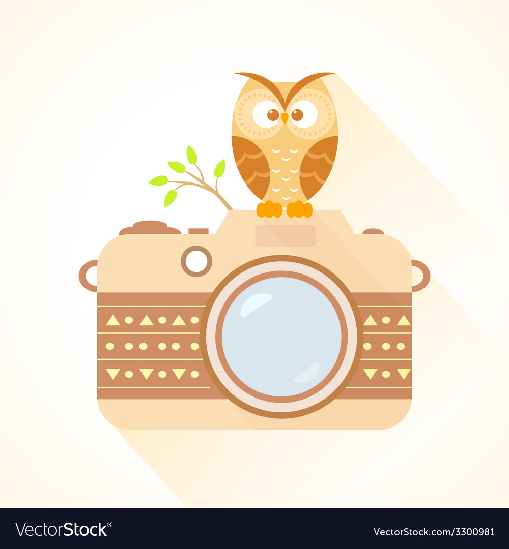 Camera and owl vector | Price: 1 Credit (USD $1)