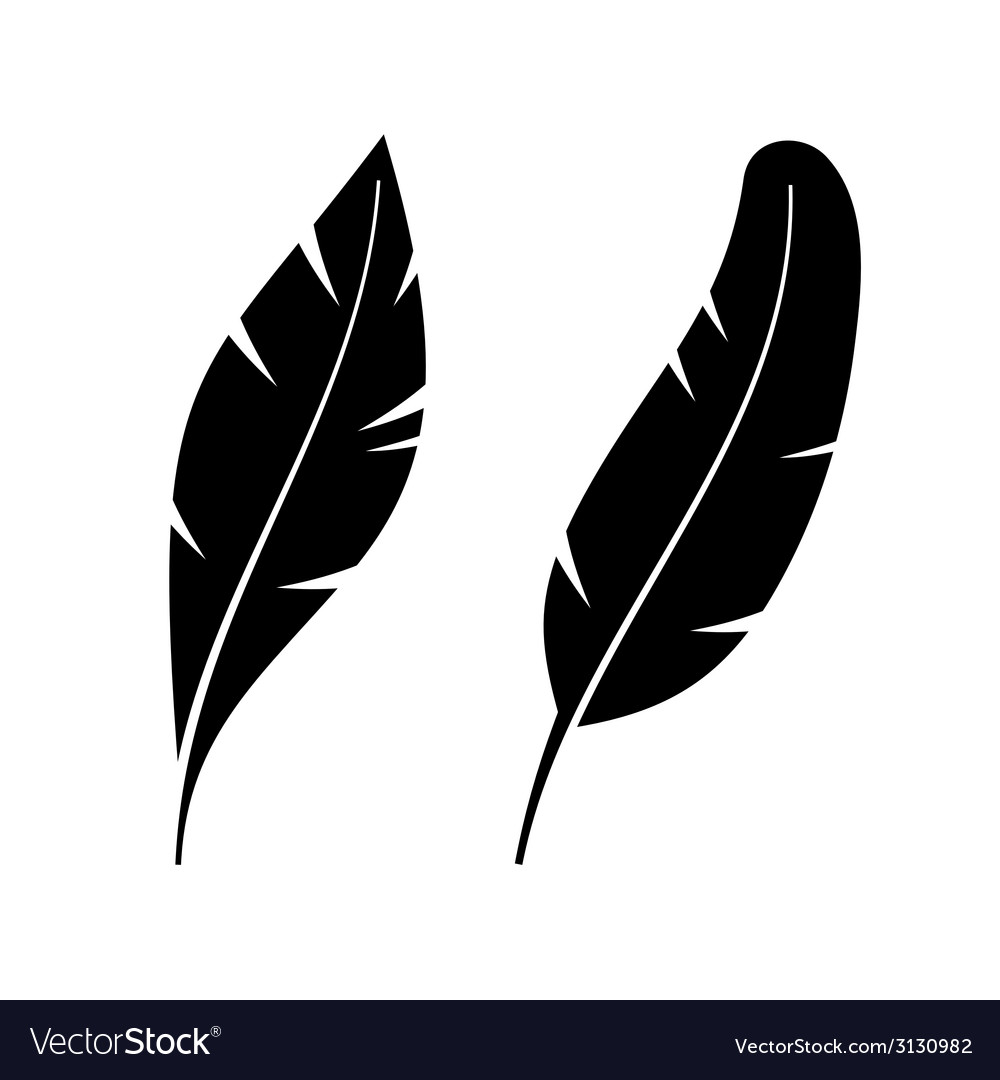 Two icon style feathers vector | Price: 1 Credit (USD $1)