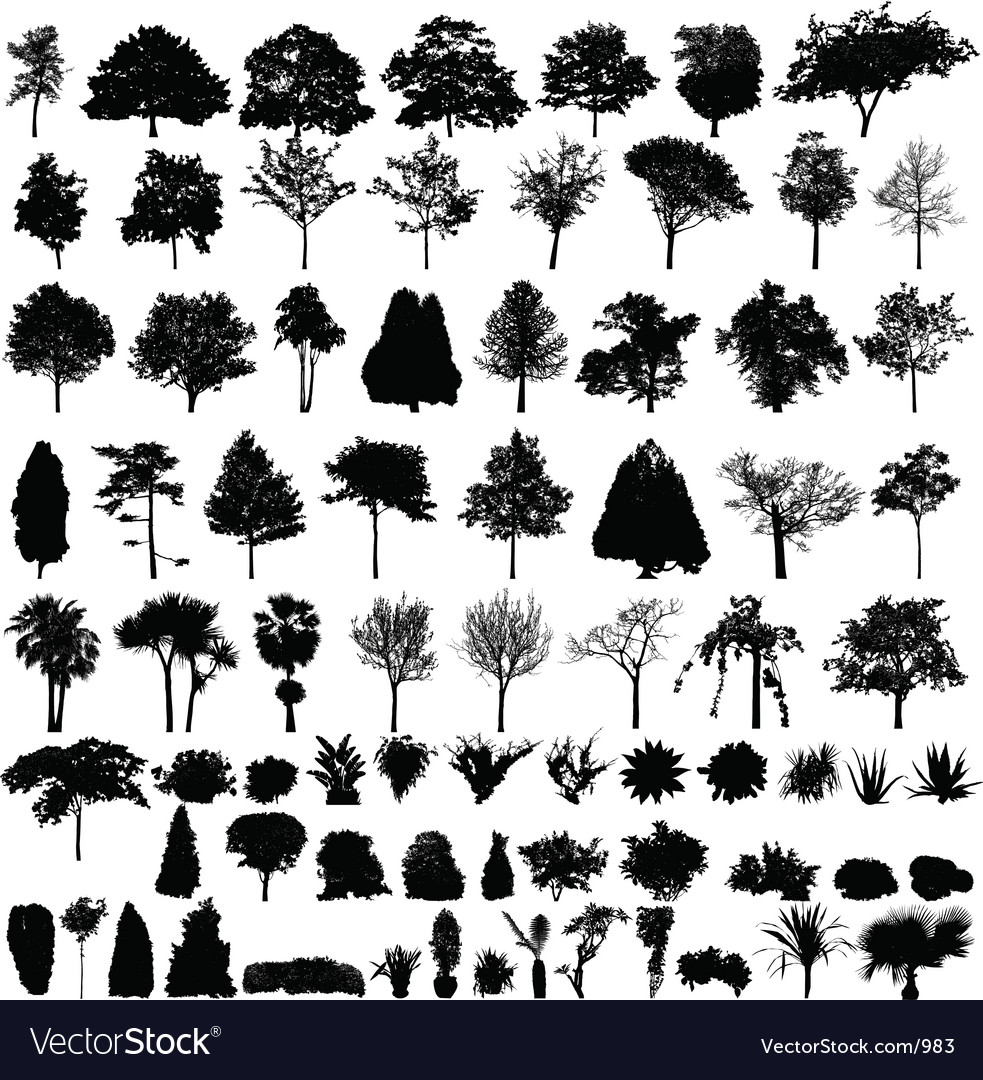 Plant silhouettes vector | Price: 1 Credit (USD $1)