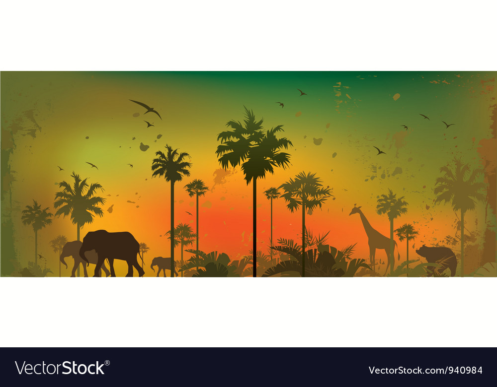 Jungle background 1 vector | Price: 1 Credit (USD $1)