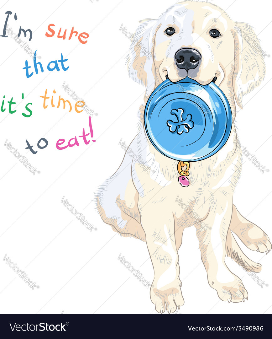 Puppy dog labrador retriever with bowl for food vector | Price: 1 Credit (USD $1)
