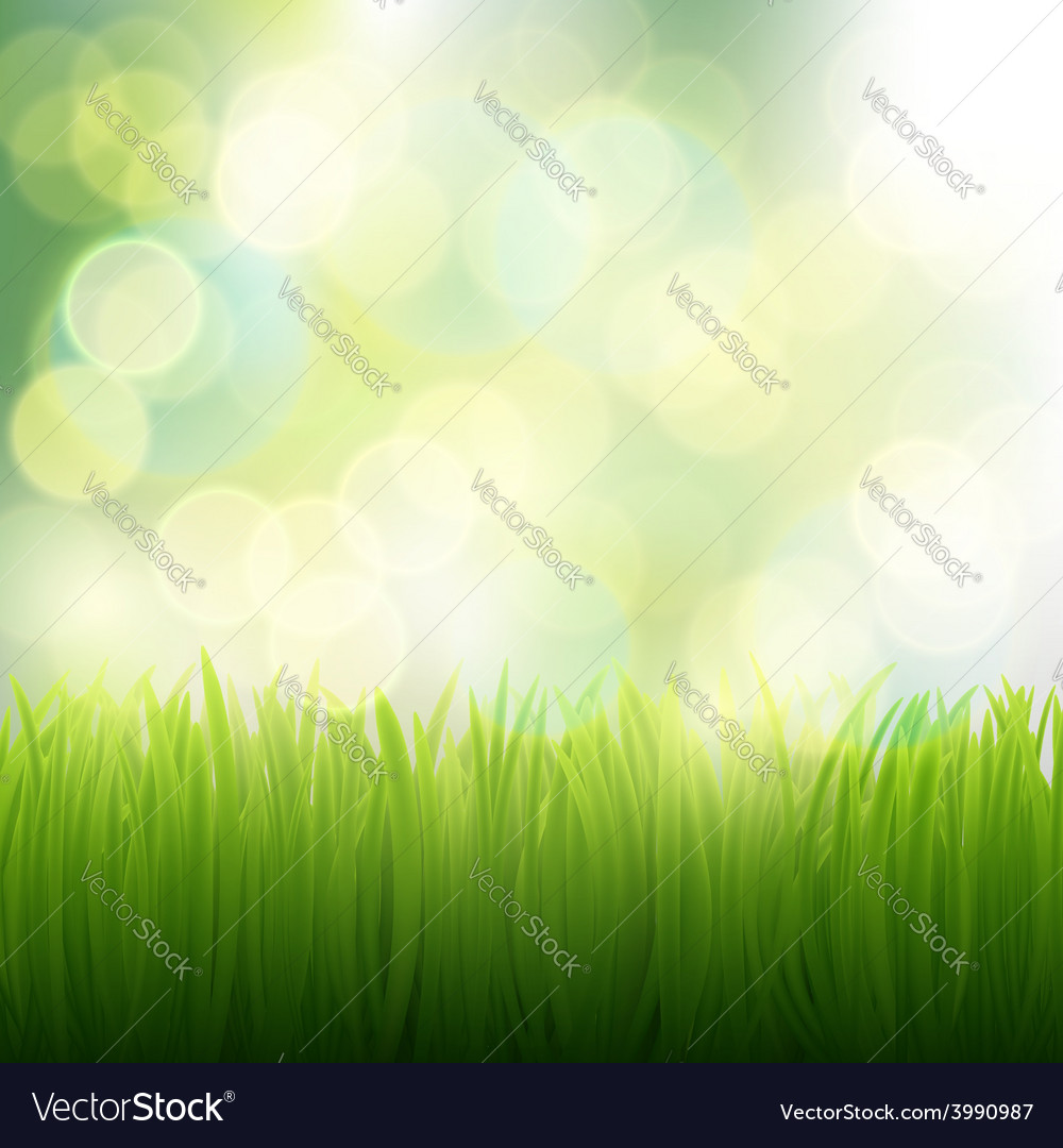 Natural background of grass vector | Price: 1 Credit (USD $1)