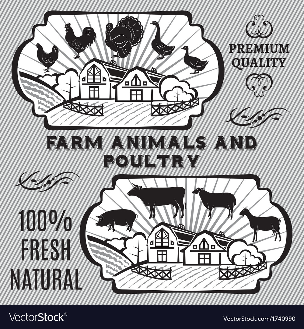 Farm animals and poultry vector | Price: 1 Credit (USD $1)
