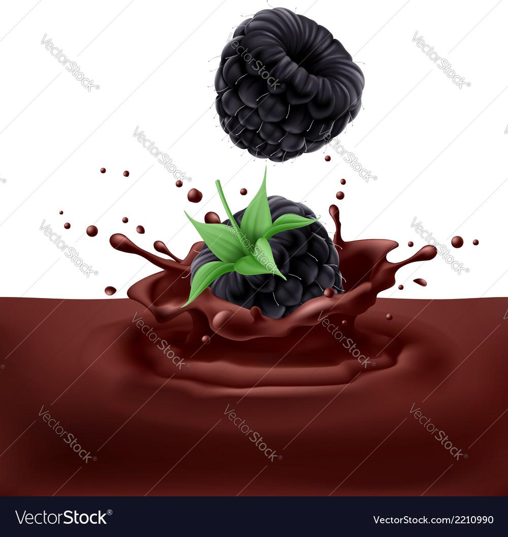 Yellow raspberries with chocolate vector | Price: 1 Credit (USD $1)