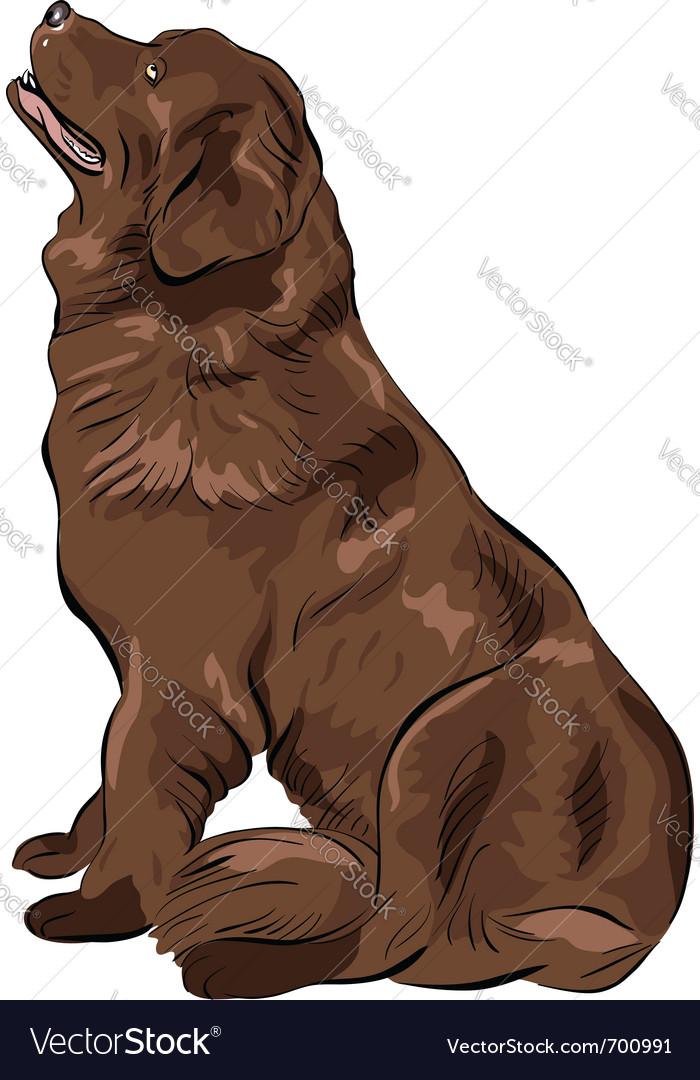 Dog cartoon vector | Price: 3 Credit (USD $3)