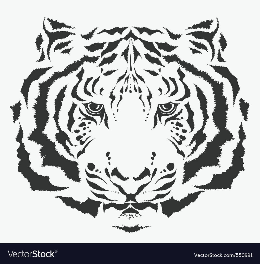 Tiger tiger vector | Price: 1 Credit (USD $1)