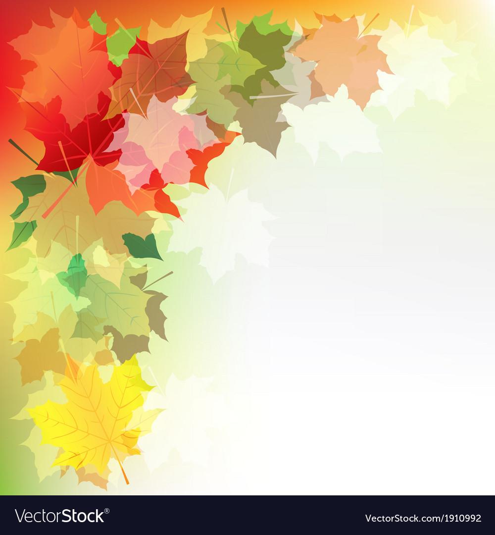 Autumn maple leaves vector   Price: 1 Credit (USD $1)