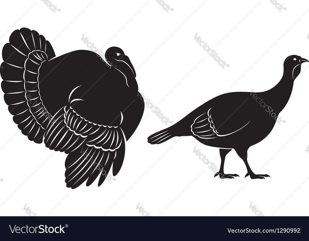 Bird turkey vector | Price: 1 Credit (USD $1)