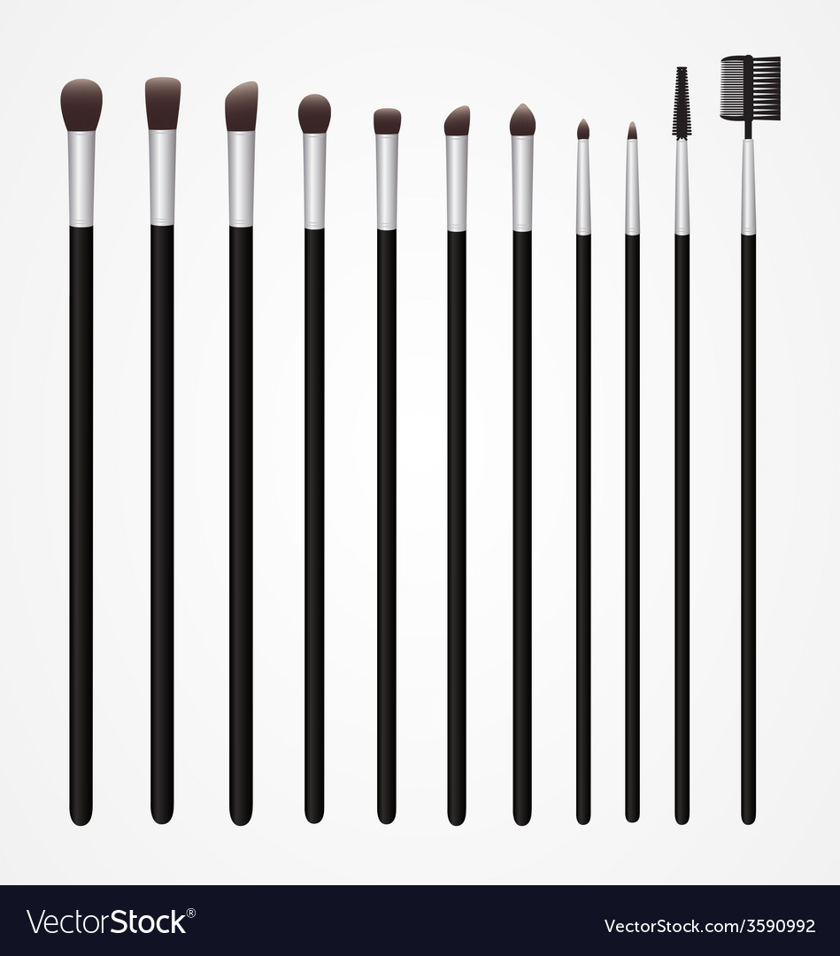 Set of cosmetic brushes for make up vector | Price: 1 Credit (USD $1)