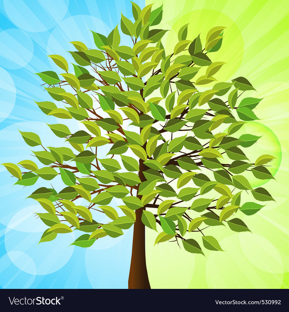 Summer tree with green leaves on a half green and vector | Price: 1 Credit (USD $1)