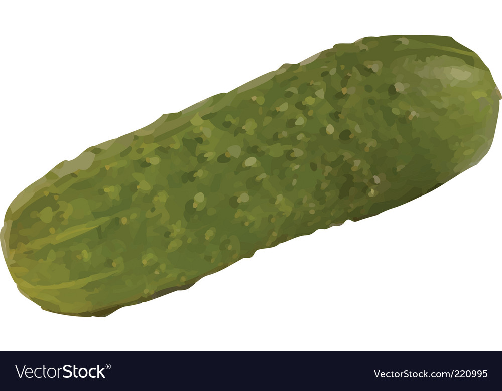 Cucumber vector   Price: 1 Credit (USD $1)