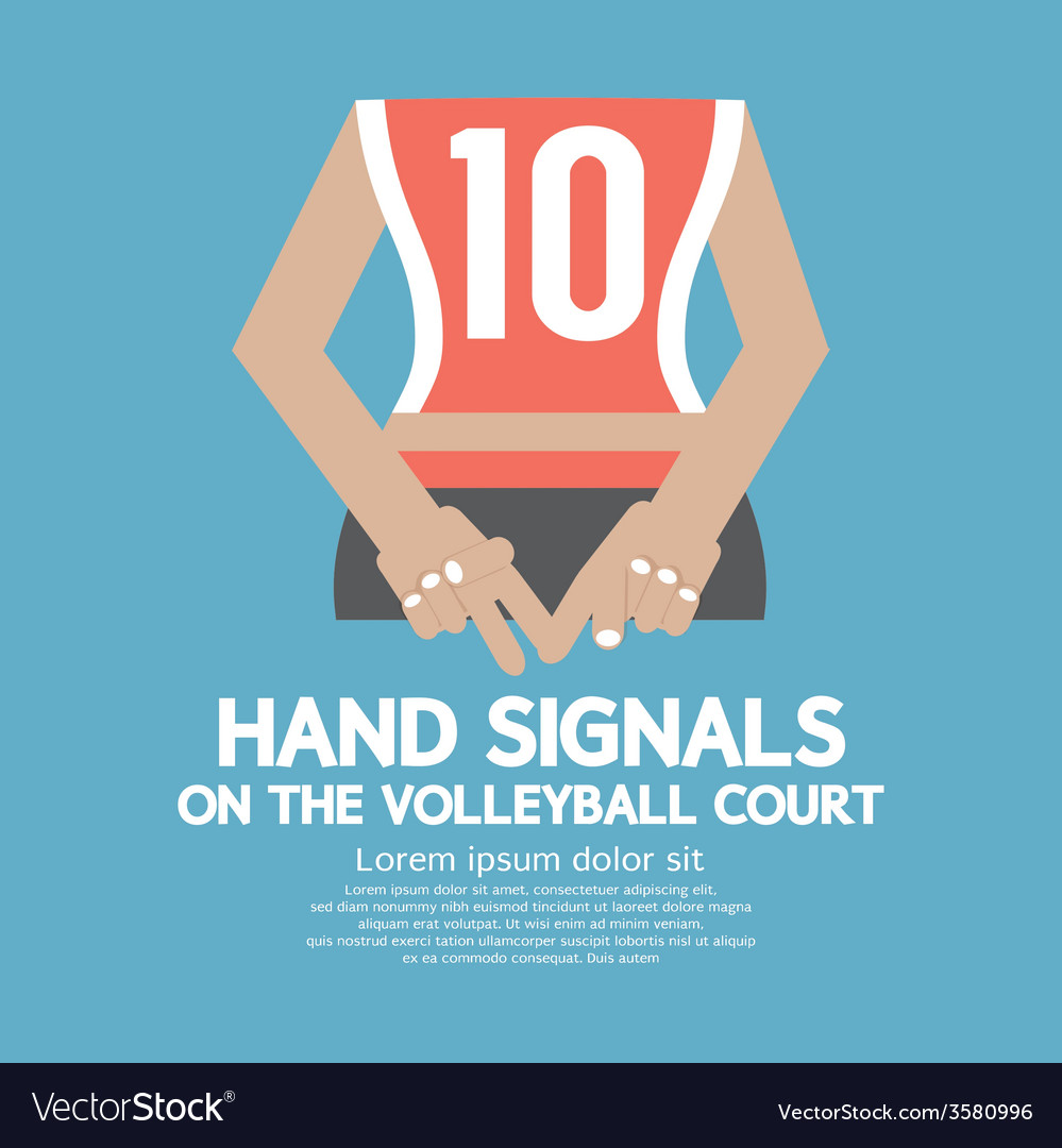Hand signals of the volleyball players backside vector | Price: 1 Credit (USD $1)