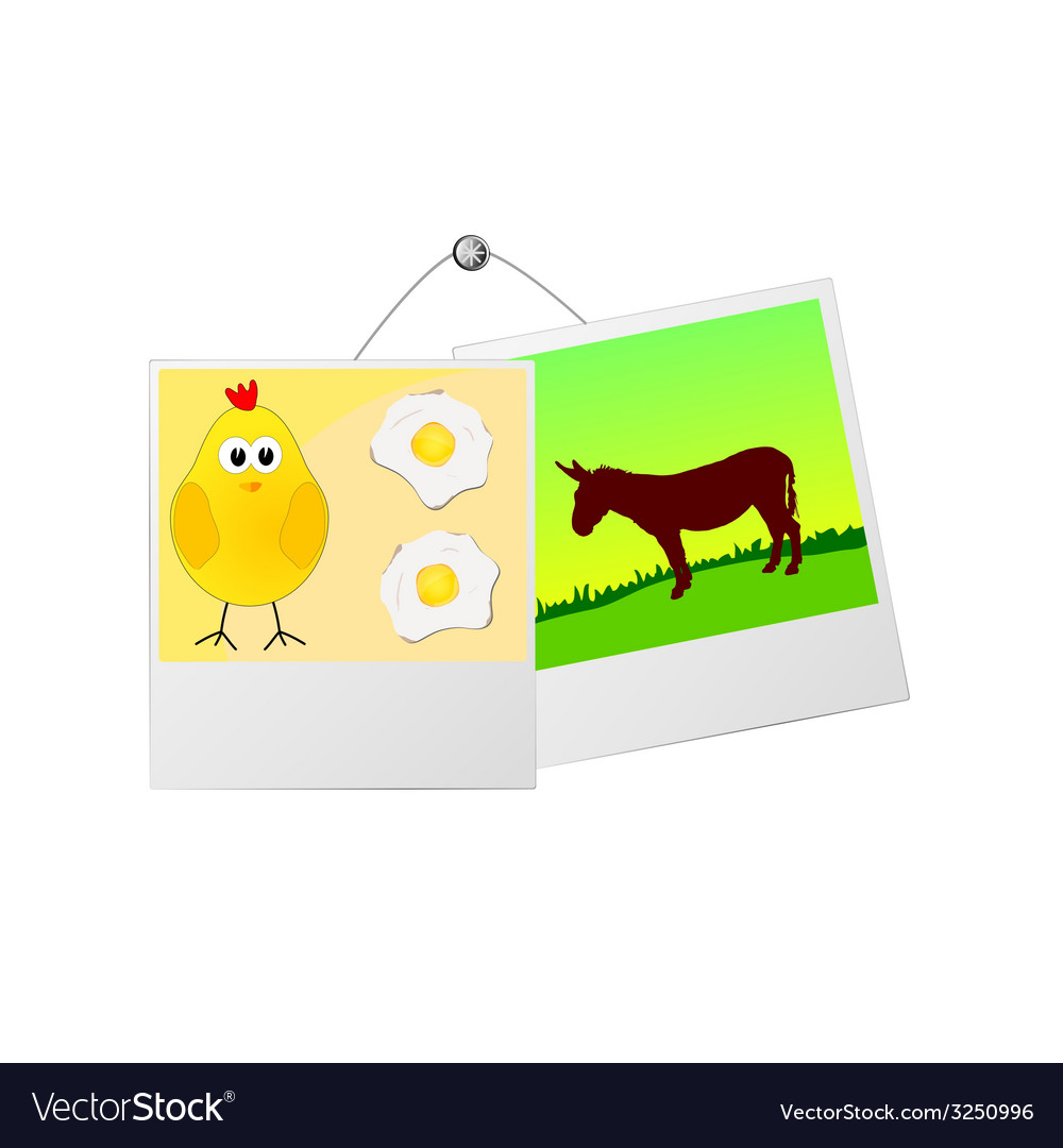 Photo frame with cute donkey and the chicken vector | Price: 1 Credit (USD $1)