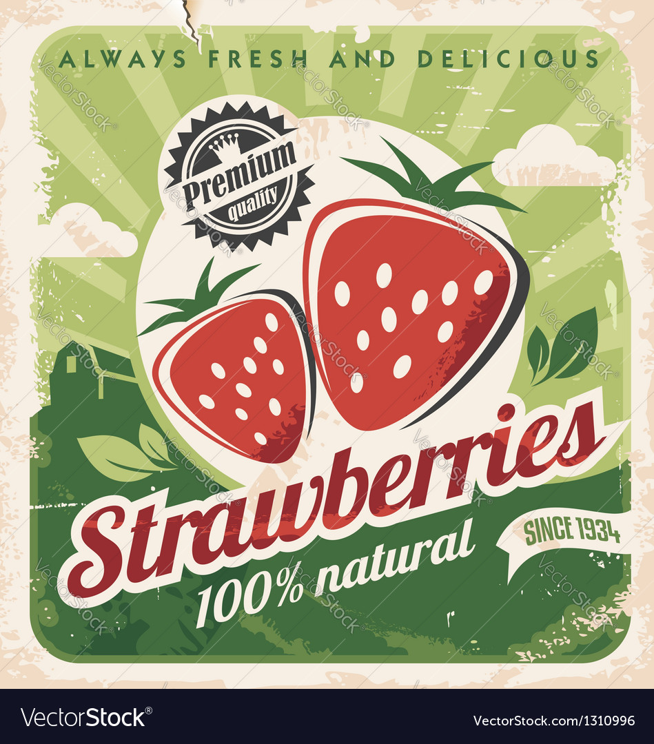 Vintage poster template for strawberry farm vector | Price: 1 Credit (USD $1)