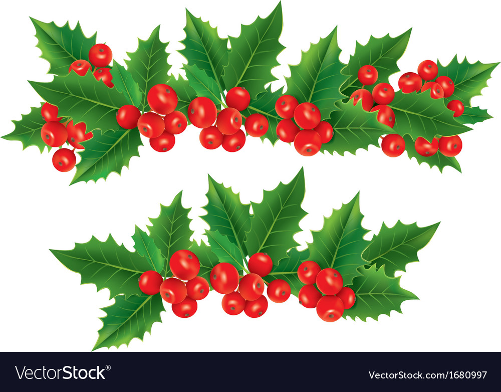 Christmas garland of holly berries vector | Price: 1 Credit (USD $1)