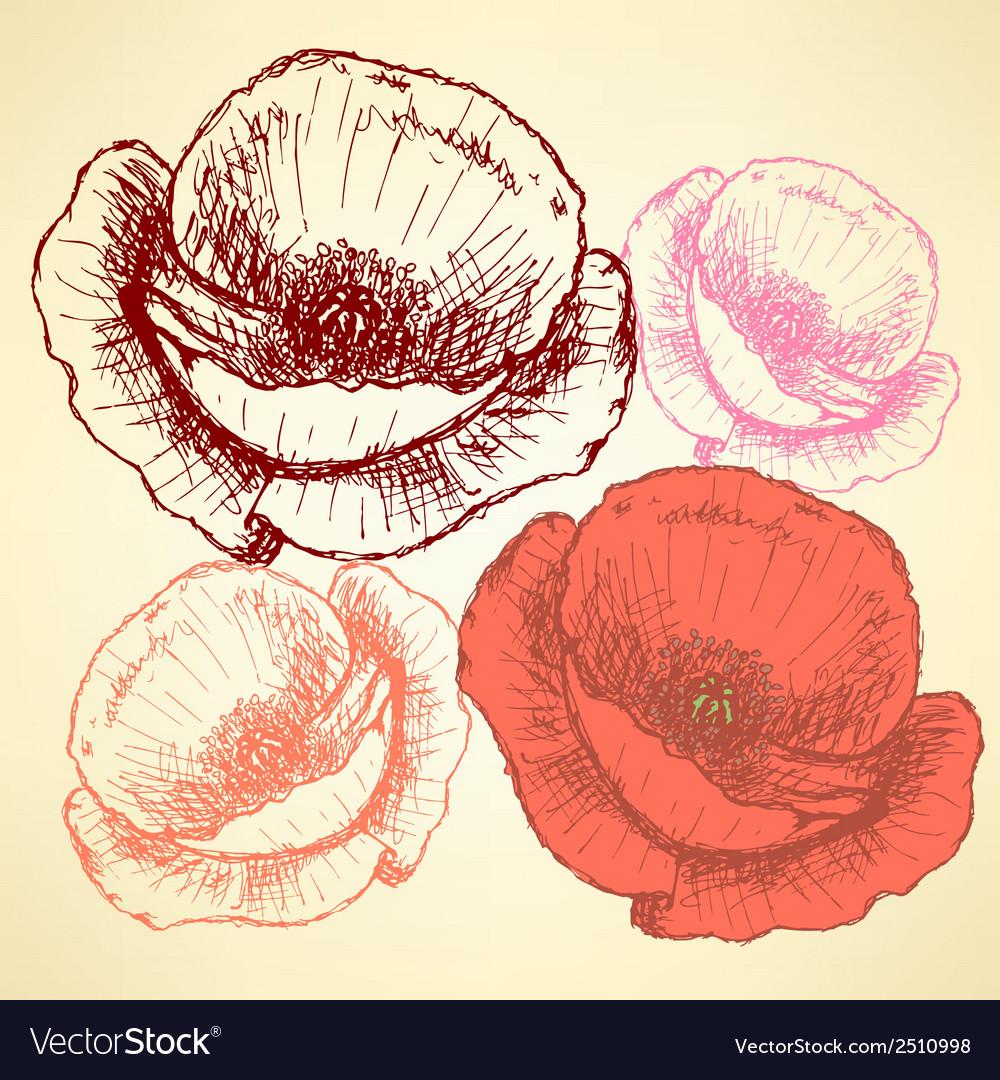 Poppy vector | Price: 1 Credit (USD $1)