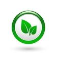 Green leaf sign vector