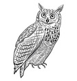 Owl bird as halloween symbol vector