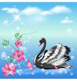 Elegant black swan vector