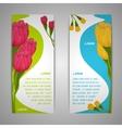 Tulip flowers banners vector