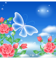 Butterfly and roses vector