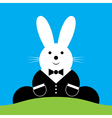 Sitting smiling easter bunny with suit vector