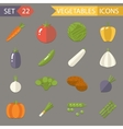 Vegetables symbols healthy and healthsome food vector