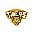 Tiger sports mascot head front vector