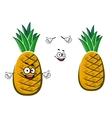 Ripe yellow pineapple fruit character vector