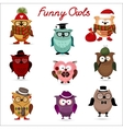 Funny owls set for your design vector