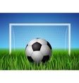 Soccer ball and grass field vector