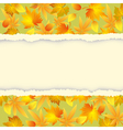 Autumn background with leaf pattern vector