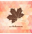 Geometric background card with maple leaf eps 10 vector