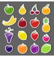 Fruit icons sticker set vector