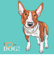 Smiling cartoon bull terrier dog breed vector