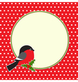 Christmas round frame with bullfinch vector