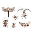 Insects in tribal ornamental style vector
