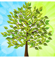 Summer tree with green leaves on a half green and vector