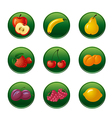 Fruits and berries button set vector