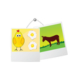 Photo frame with cute donkey and the chicken vector