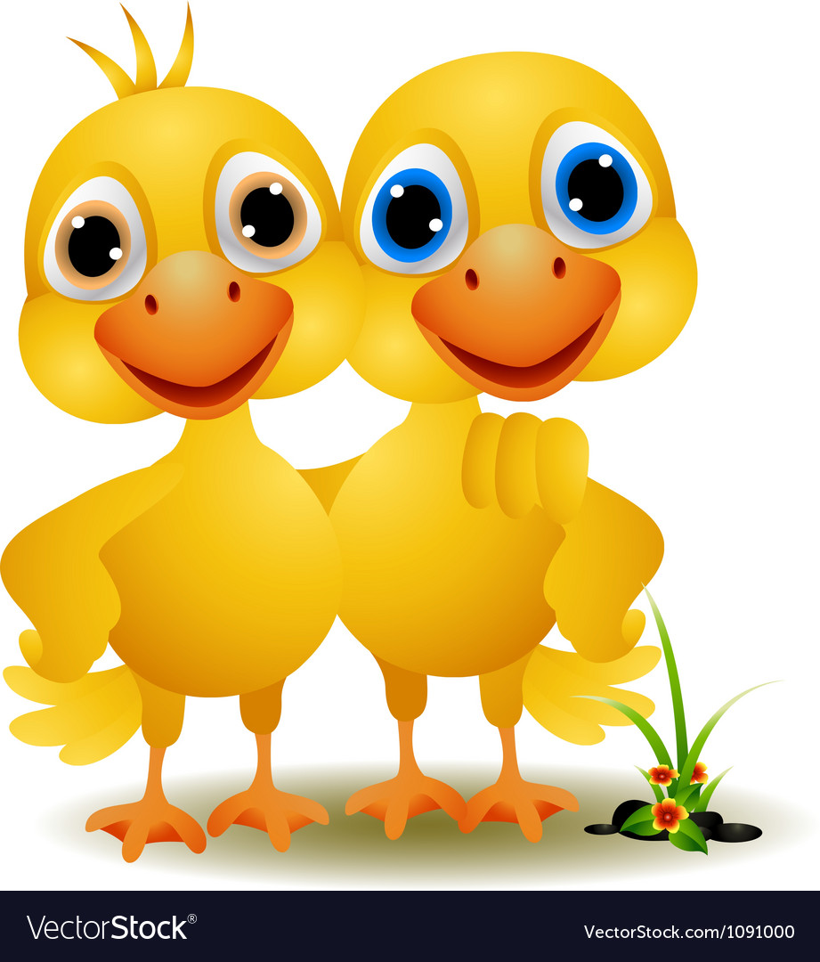 A pair of ducks in a friendly vector | Price: 1 Credit (USD $1)