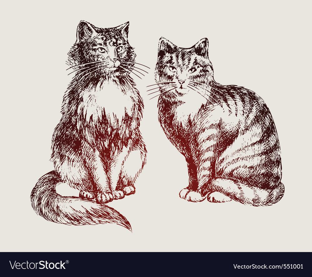 Cats sketch vector | Price: 1 Credit (USD $1)
