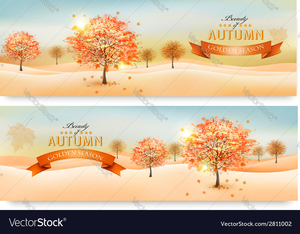 Two autumn abstract banners with colorful leaves vector | Price: 3 Credit (USD $3)