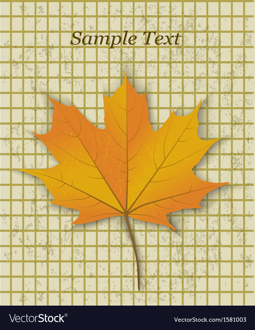 Yellow maple leaf vector | Price: 1 Credit (USD $1)
