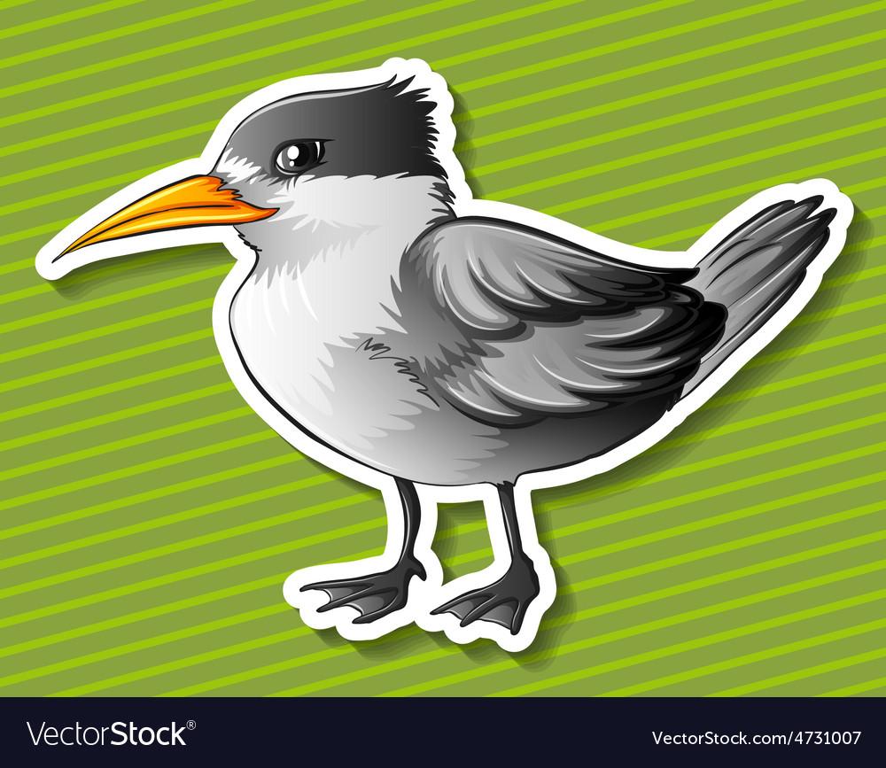Gray bird vector   Price: 1 Credit (USD $1)