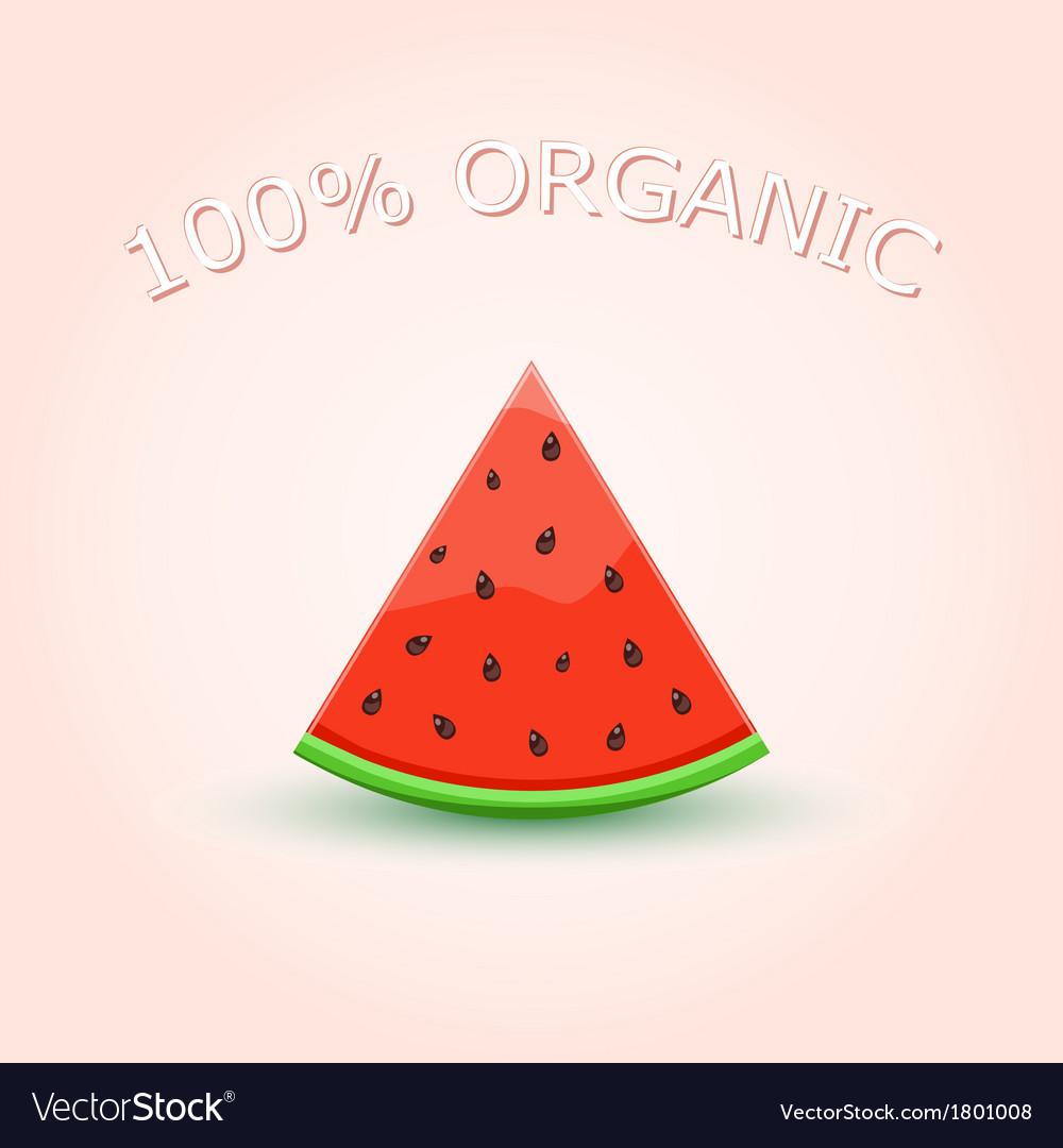 100 organic watermelon slice vector | Price: 1 Credit (USD $1)