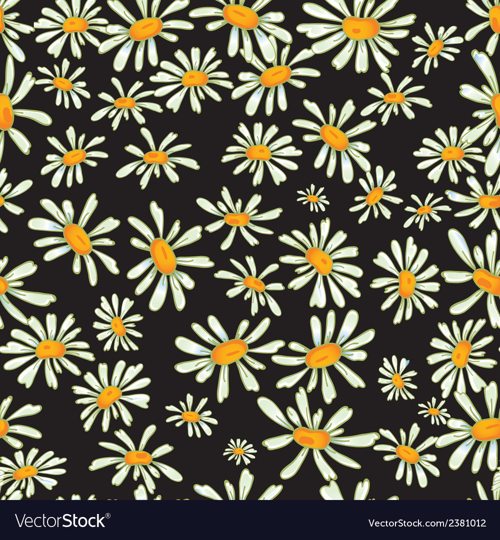 Flower camomile seamless pattern background vector | Price: 1 Credit (USD $1)